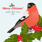 Jul bakgrund och gratulationskort med domherre och holly — Stockvektor
