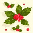 Stock Vector: Christmas holly berries