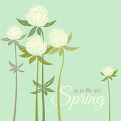 Spring wildflowers — Stock Vector