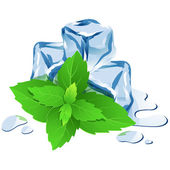 Ice cubes with mint isolated on white  — Stock Vector