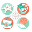 Summer set: starfish, shells, beach bag, sunglasses, tropical co — Stock Vector #51390223