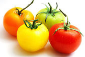 Cluster of red yellow orange and green tomatoes — Stock Photo