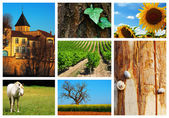 Collage of french countryside landscape — Stock Photo