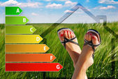 Icon of house energy efficiency rating with nice feet and green background — Photo