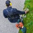 Gardener using corded string trimmer in a park — Stock Photo #44271659
