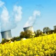 Nuclear power plant and colza fields — Stock Photo #45609749