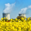 Nuclear power plant and colza fields — Stock Photo #45609839