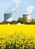 核动力厂和菜子油字段 — 图库照片