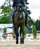 military rider on dressage competition — Stock Photo