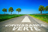 Green Growth word painted on asphalt road — Stock Photo