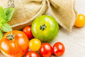 Many varieties of colorful tomatos — Stock Photo