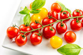 Closeup of colorful tomato on the vine — Stock Photo