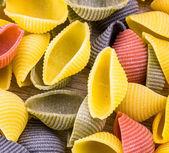 Uncooked Italian conchiglie pasta — Stock Photo