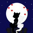 Greeting card for Valentine Cats admire the night sky — Stock Vector