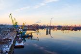 Trade dock cranes — Foto Stock