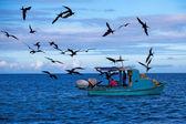 рыбаки в тихом океане — Стоковое фото