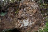 Kamenné plastiky na ostrov floreana — Stock fotografie