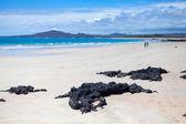 Pláž na ostrově isabela — Stock fotografie