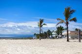 Puerto Villamil, Isabela island — Stock Photo