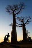 Boys on Baobab alley — Stock Photo