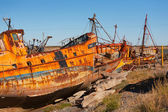 Destroyed ships on the Atlantic coast — Stock Photo