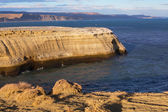 Der nationalpark monte lyon — Stockfoto