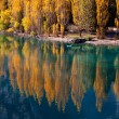 Autumn trees reflected in water — Stock Photo