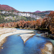 Autumn mountain river — Stock Photo