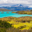 Mountain landscape, Patagonia, Chile — Stock Photo