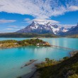 The National Park Torres del Paine — Stock Photo #17816789