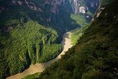 каньон дель сумидеро, тустла-гутьеррес, мексика — Стоковое фото