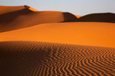 Sand dunes in the desert — Stock Photo