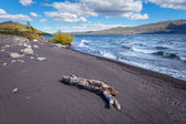 Lake Huechulafquen, national park Lanin — Stock Photo