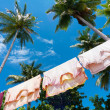Clothes drying in the wind — Stock Photo #20591875