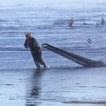 Group shellfish gatherers on the coast of the Atlantic — Stock Photo