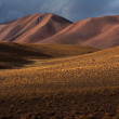 Altiplano plateau — Stock Photo #29480135