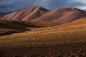 Altiplano plateau — Stock Photo