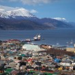 A view of Ushuaia, Tierra del Fuego. — Stock Photo