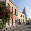 Street of the ancient city Aguascalientes, Mexico — Stock Photo