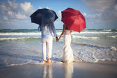 Couple of newly married on the beach with umbrellas — Stock Photo