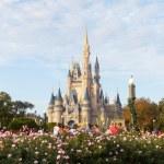 MAGIC KINDOM DISNEYWORLD, ORLANDO, FLORIDA, USA - DEC 27: The M — Stock Photo #38041375