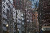The winter in Boston — Stock Photo