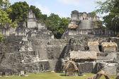 Pyramide Maya de tikal, guatemala — Photo