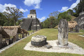 Pirámide Maya en tikal, guatemala — Foto de Stock