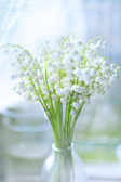 Bouquet of lilies of valley — ストック写真