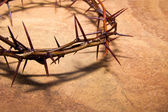Crown of thorns — Foto Stock