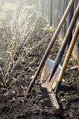 Old garden tools — Stock Photo