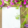 Blank with spring flowers — Stock Photo