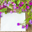 Blank with wild flowers — Stock Photo #26070447