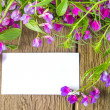 Blank card with flowers  — 图库照片